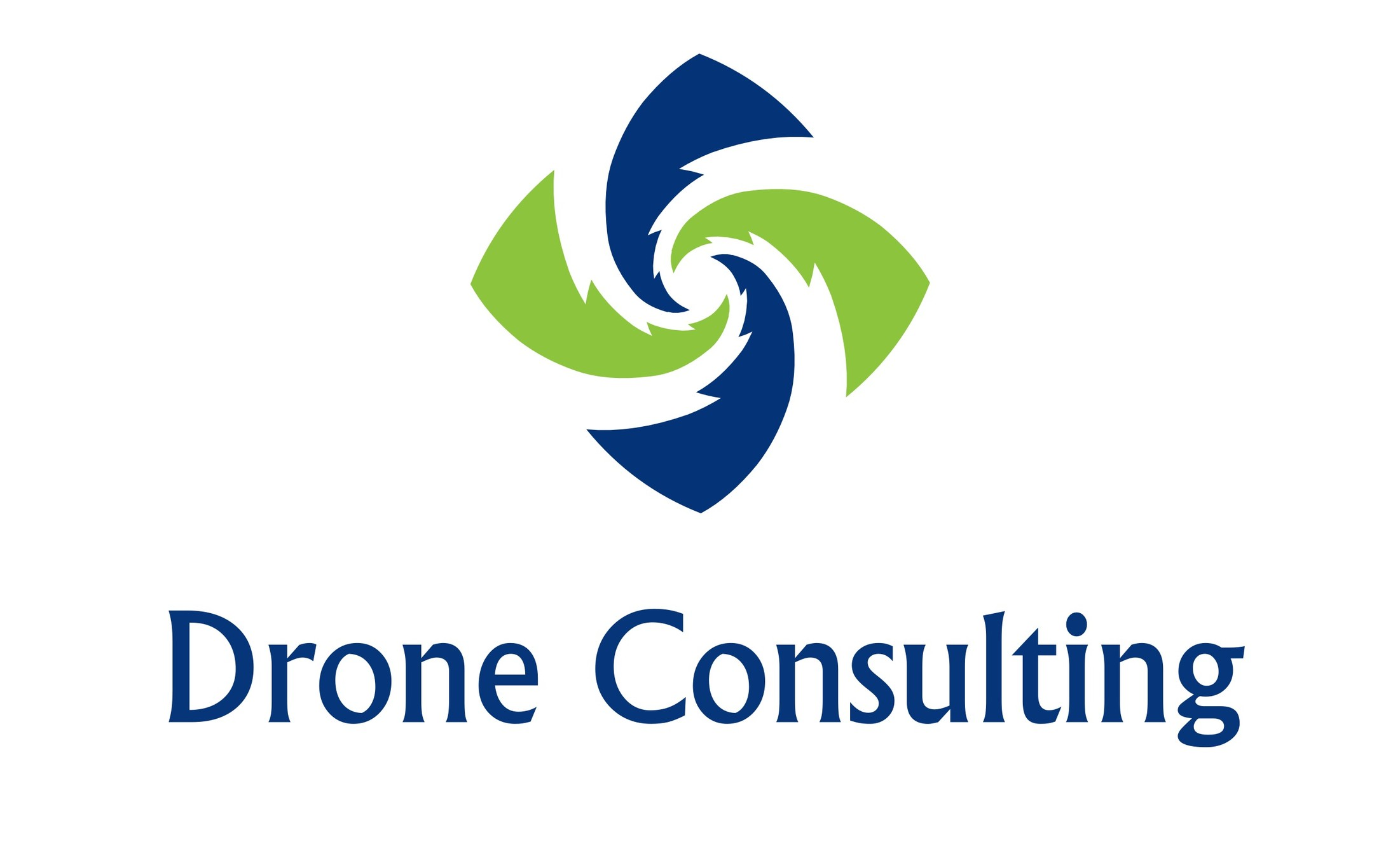 Image DRONE CONSULTING