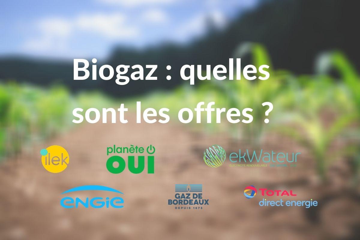 Gaz vert : les offres de biogaz et de biométhane en France