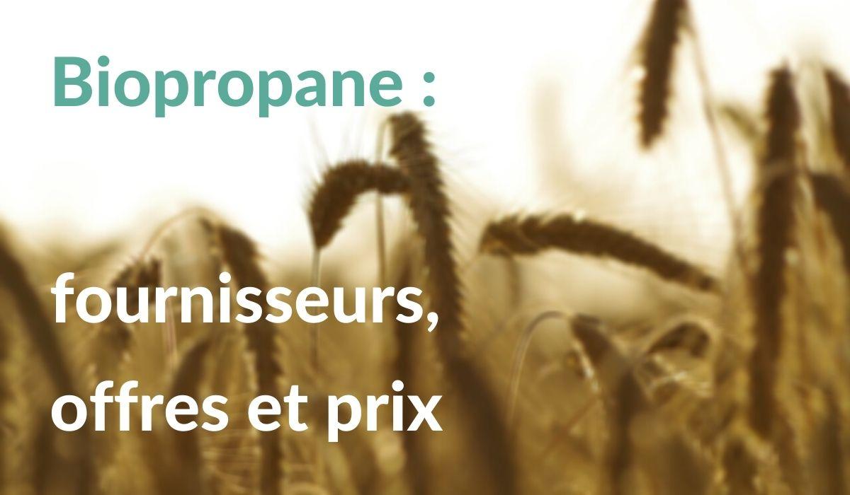 Biopropane prix energie renouvelable citerne et bouteilles de gaz