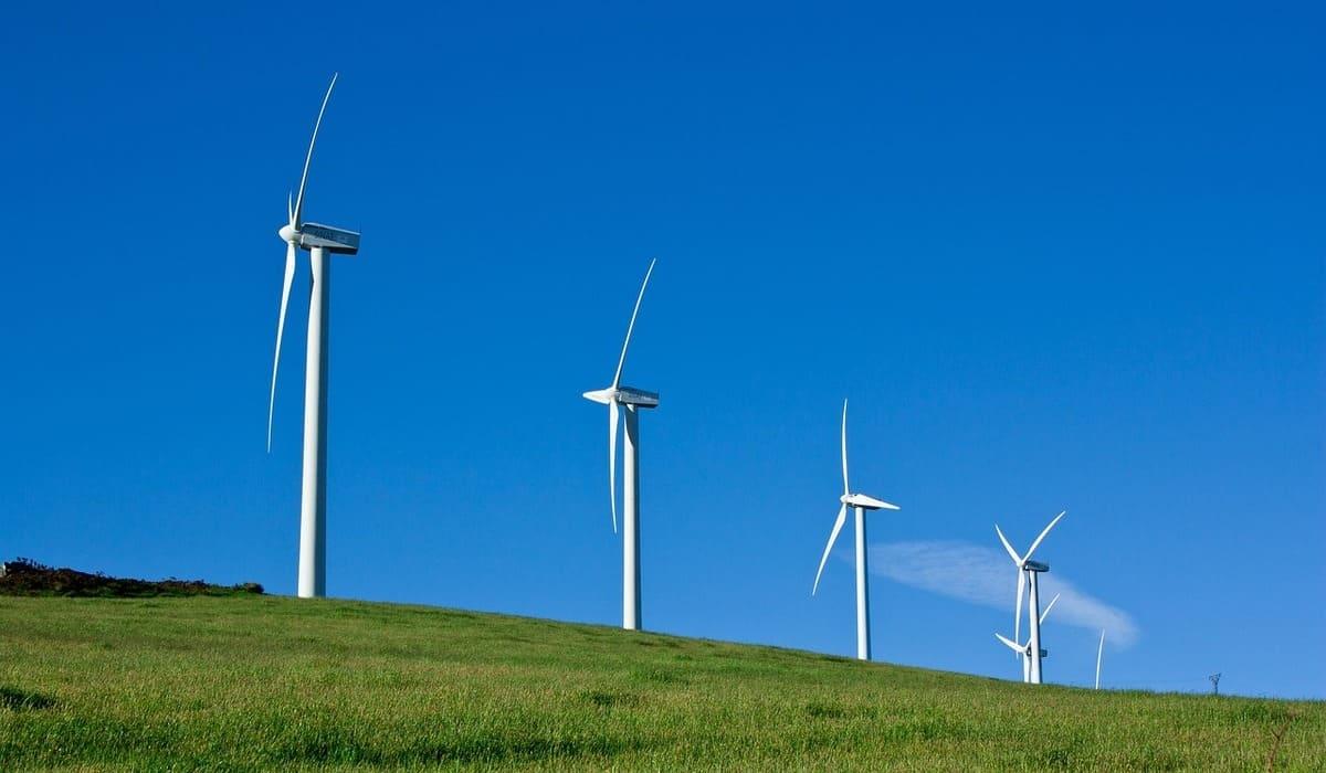 Classement des fournisseurs d'électricité verte