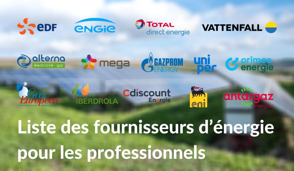 Fournisseurs d'énergie professionnels