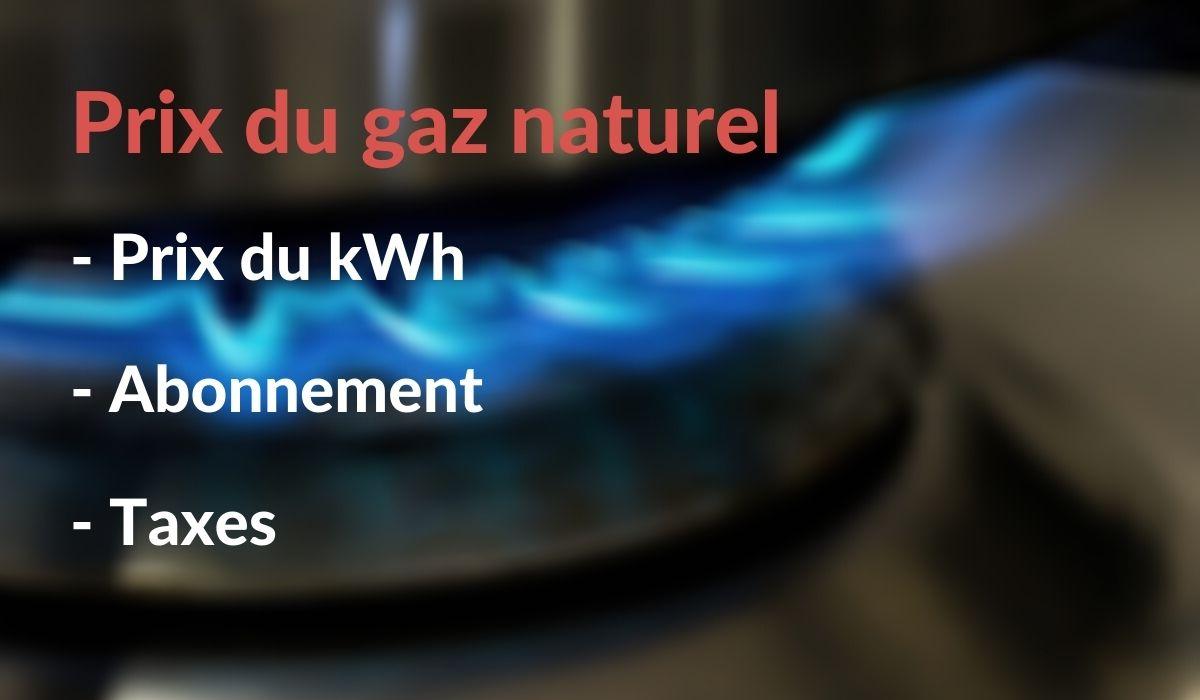 Prix du gaz naturel en 2021