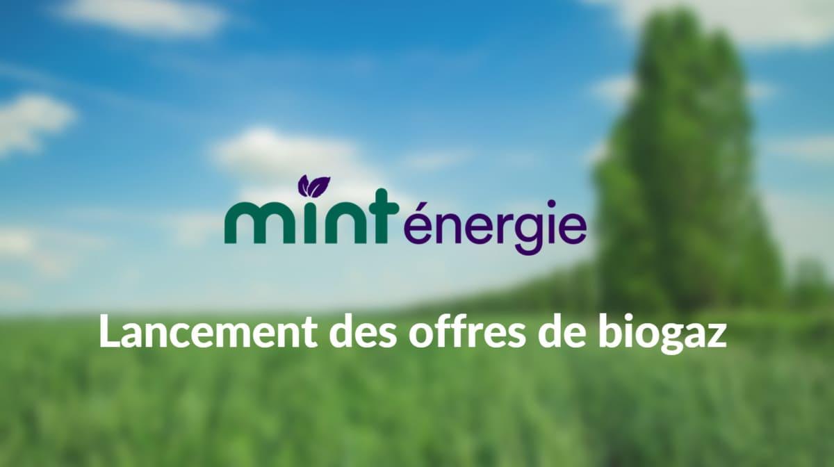 Mint Energie offres de biogaz